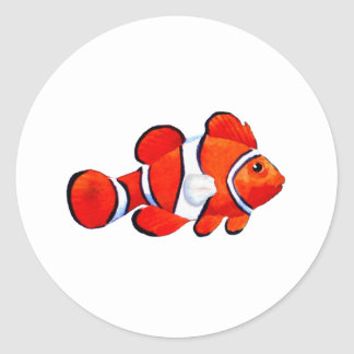 Fish Orange Vero Beach 2010 The MUSEUM Zazzle Gift Classic Round Sticker