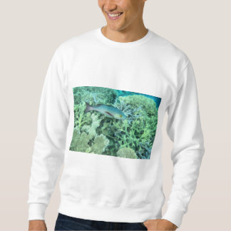 Fish roaming the reef sweatshirt