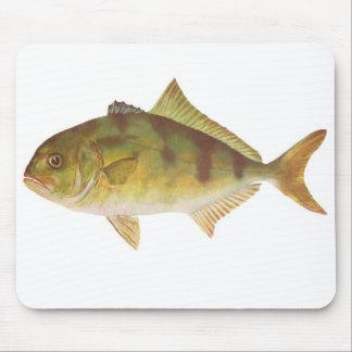 Fish - Samson-Fish - Seriola hippos Mouse Pad