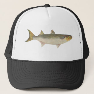 Fish - Sea Mullet - Mugil dobula Trucker Hat