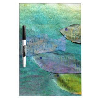 fish swimming about dry erase whiteboards