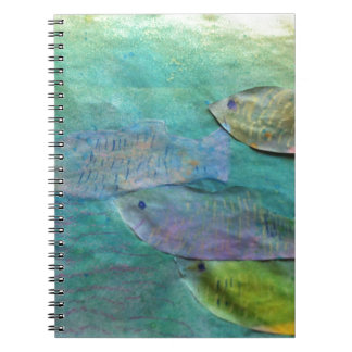 fish swimming about note book