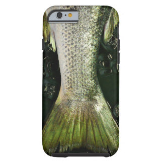 Fish tail | tough iPhone 6 case