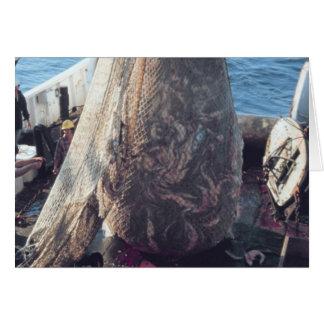 Fish Trawling Net Greeting Card