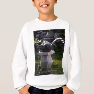 Fish Water Feature Sweatshirt