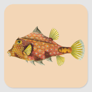 fish wrap customize me stickers