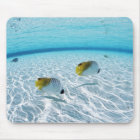 Fishes in the sea 2 mouse pad