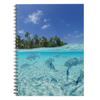 Fishes in the sea spiral notebook