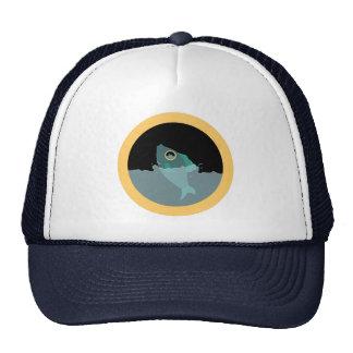 Fisheye Hat