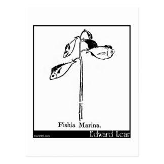 Fishia Marina. Postcard