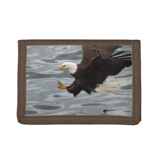Fishing Bald Eagle Birdlovers Wildlife Photo 6 Tri-fold Wallet