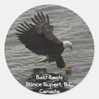 Fishing Bald Eagle Gift Set Classic Round Sticker
