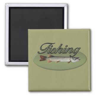 Fishing Magnet
