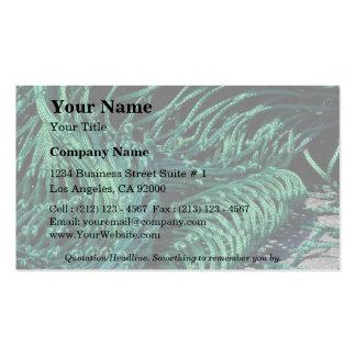 Fishing net, Grand Manan Island, New Brunswick, Ca Business Card Template