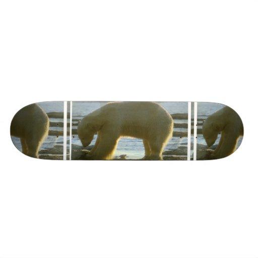 Fishing Polar Bear Skateboard