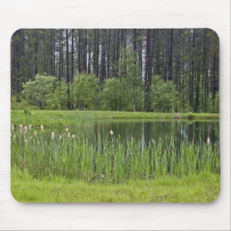 Fishing pond mouse pad