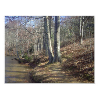 Fishing Trail Photo Print