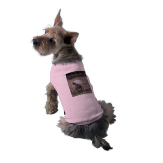 """Fit for a Mini-Princess"" Mini Pig or Dog Tank top Dog Clothes"