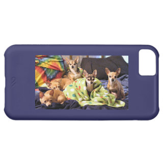 Five Chihuahuas iPhone 5C Case
