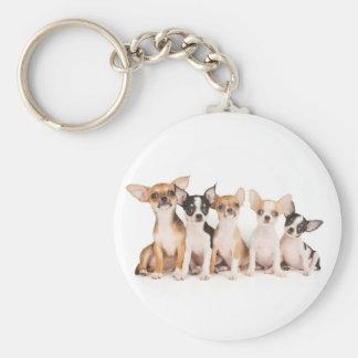 Five cute puppies keychain