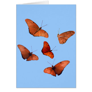 Five Julia Butterflies Card