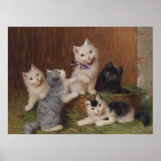 Five Kittens Matte Poster