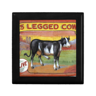 Five Legged Cow Gift Box