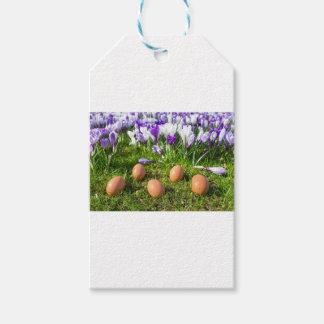 Five loose eggs lying near blooming crocuses gift tags