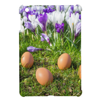 Five loose eggs lying near blooming crocuses iPad mini cover
