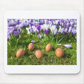 Five loose eggs lying near blooming crocuses mouse pad