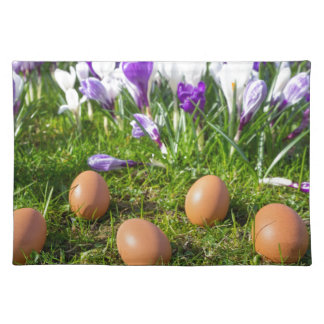 Five loose eggs lying near blooming crocuses placemat