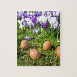 Five loose eggs lying near blooming crocuses puzzles