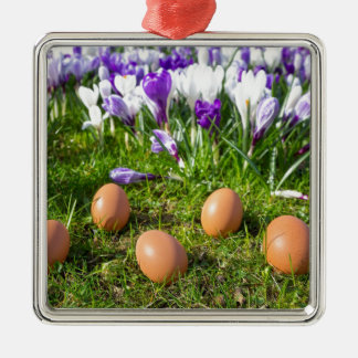 Five loose eggs lying near blooming crocuses Silver-Colored square ornament