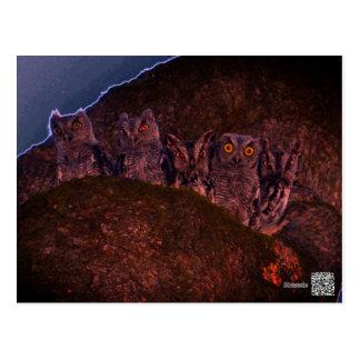 Five Owls in an Oak Hollow Postcard