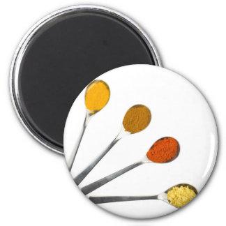 Five seasoning spices on metal spoons magnet