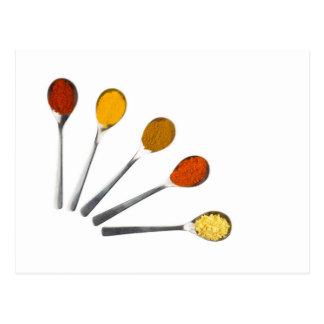 Five seasoning spices on metal spoons postcard