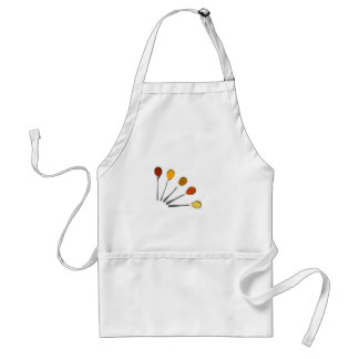 Five seasoning spices on metal spoons standard apron