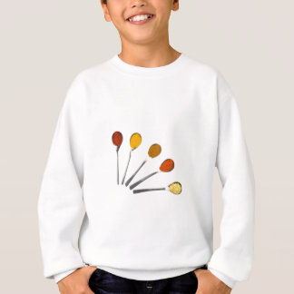 Five seasoning spices on metal spoons sweatshirt