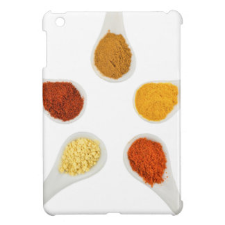 Five seasoning spices on porcelain spoons case for the iPad mini