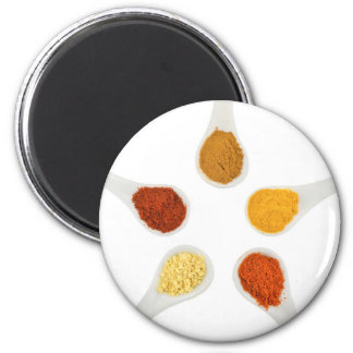 Five seasoning spices on porcelain spoons magnet