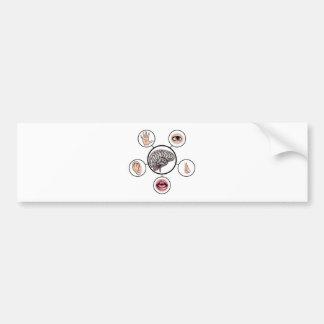 Five Senses Brain Bumper Sticker