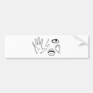Five Senses Illustration Bumper Sticker