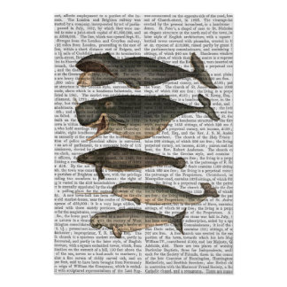 Five Vintage Whales Poster