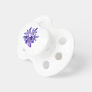 Five violet crocuses 05.0, spring greetings pacifier