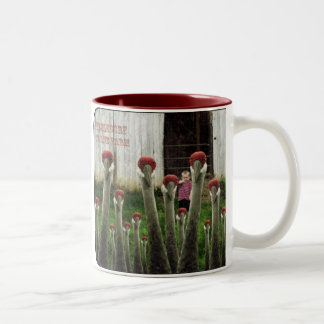 Fizzledorfs Crane Farm Two-Tone Coffee Mug
