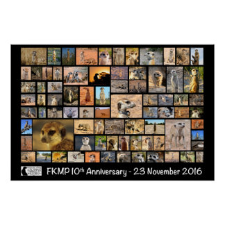 FKMP 10th Anniversary Poster - select your size