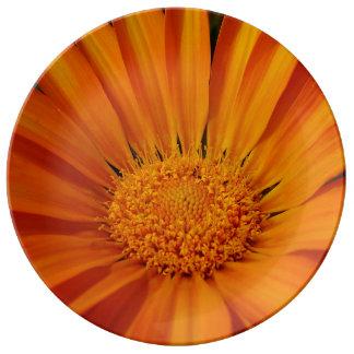 FʟᴏᴡPᴏᴡ | Daisy ~ Delight Plate