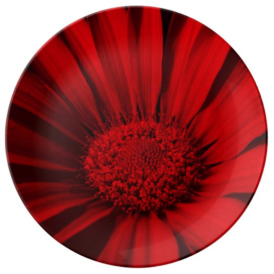FʟᴏᴡPᴏᴡ   Daisy ~ Passion Plate