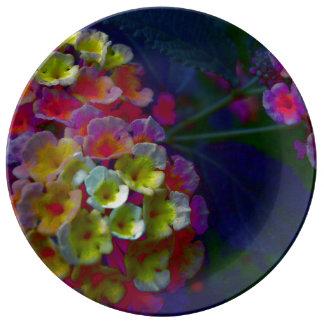 FʟᴏᴡPᴏᴡ | Lantana Ensemble ~ Aurora Plate