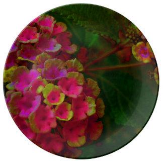 FʟᴏᴡPᴏᴡ | Lantana Ensemble ~ Sunset Plate